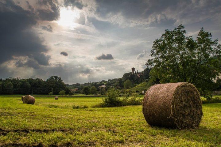 Terrealte Lecco: oltre il green delmomento