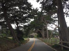 Pacific Grove | 17 miles