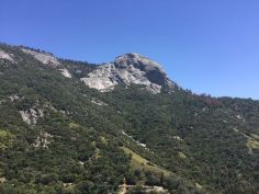 Sequoia Nationl Park | Moro Rock
