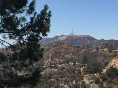 Sulle colline di Hollywood