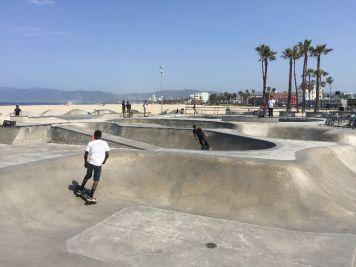 Venice | Skater