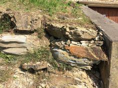 Terreno tipico dei colli di Pontida