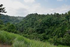 Camphuan Ridge Walk - Ubud_canyon
