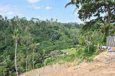 Camphuan Ridge Walk - Ubud_unicorni